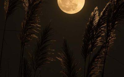 Fullmånen 5. juni og supergalaksens senter- Den store Tiltrekkeren.