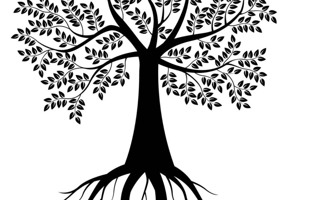 Det keltiske året. Kelternes kalender – åtte festdager